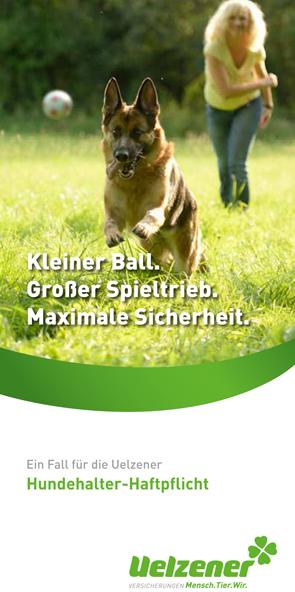 Hundehaftpflicht Hundeversicherung