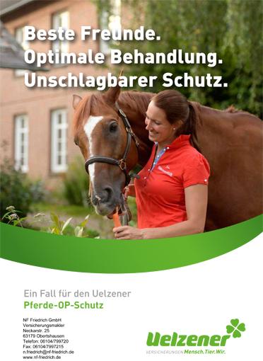 Pferde OP-Versicherung